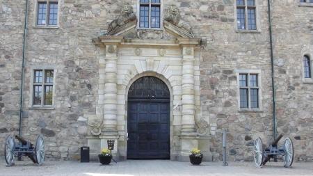 CastleGuns