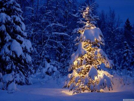 Merry-Christmas-christmas-9427475-1600-1200